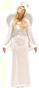 Xmas Heavenly Angel Costume